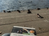 Lernen am Tegeler See